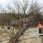 Des dégâts sous les rafales de la tempête Eberhard